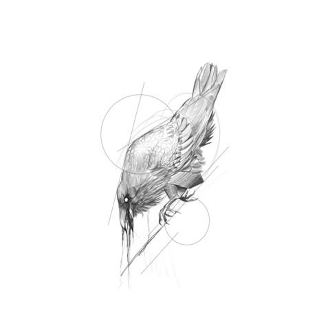 Frank Carrilho - Crow