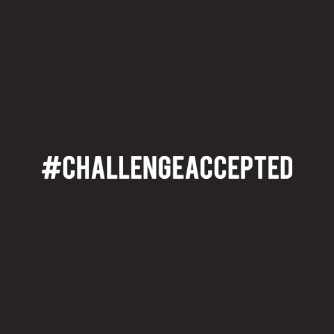 """Official Celeste """"Challenge Accepted"""" Tee"""